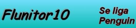 flunitor10
