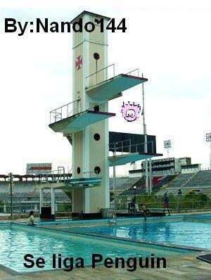 puffle-nadador